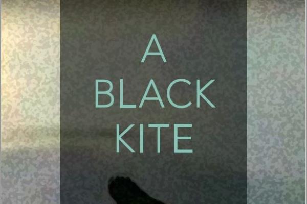 Poetry of Kim Jong-gil's Life, 'A Black Kite'