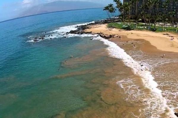 2 South Koreans found dead near Hawaii beach: foreign ministry