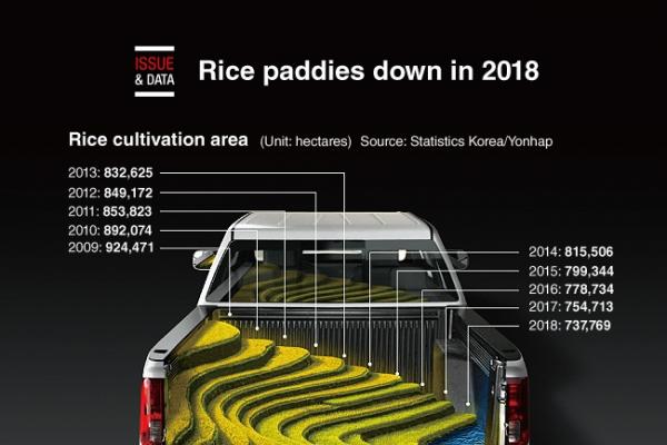 [Graphic News] Rice paddies down in 2018