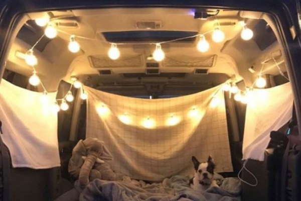 Camping anywhere - in your car