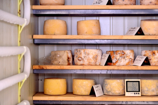 [Weekender] 'Freshness differentiates artisanal cheese'