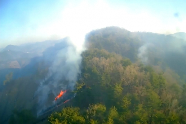 Fire in Suncheon burns 5 hectares of forest