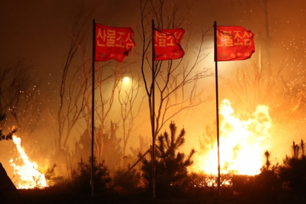 [Photo News] Goseong fire destroys 125 homes, forces 2,250 to evacuate