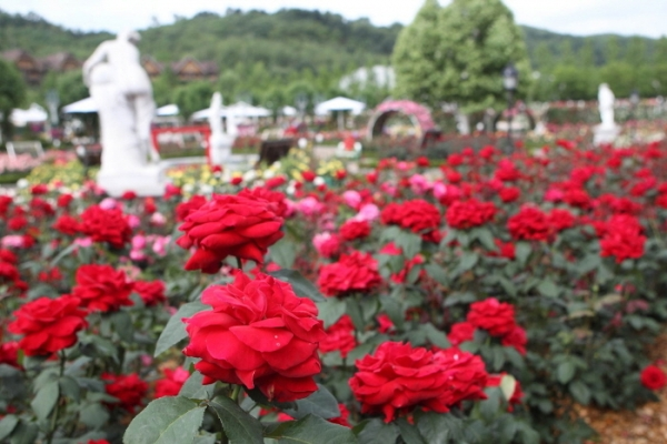 [Travel Bits] Festivals, sights across Korea