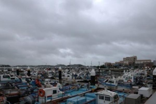 [Newsmaker] S. Korea remains on alert over Typhoon Danas