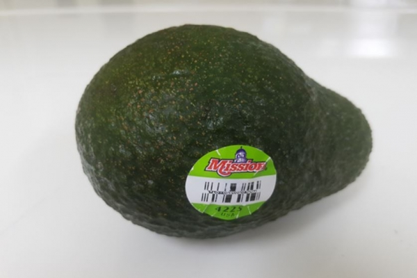 Food Safety Ministry orders recall of US avocados due to high cadmium levels