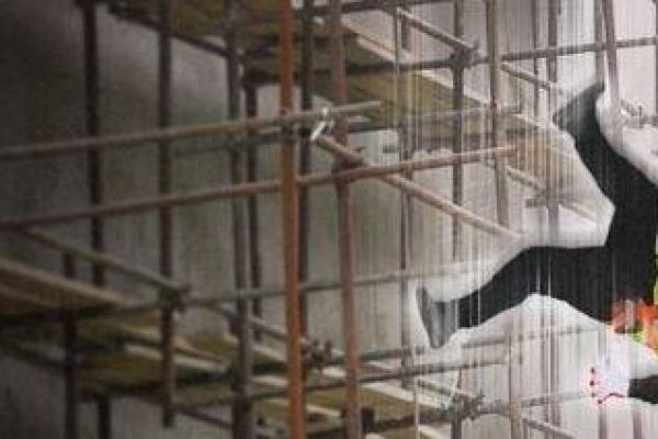 Three foreign workers dead, another in coma after accident