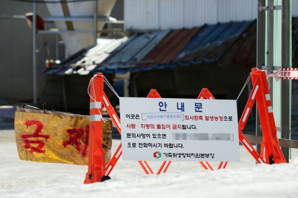 3rd case of African swine fever confirmed in Gimpo