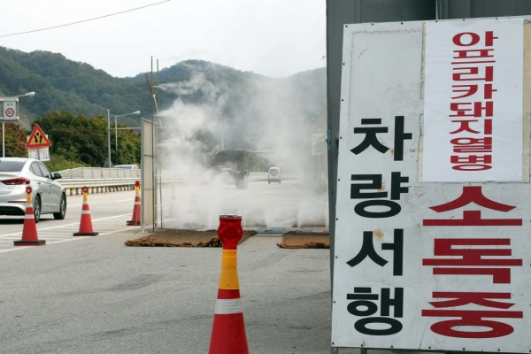 Another suspected African swine fever case tests negative in S. Korea