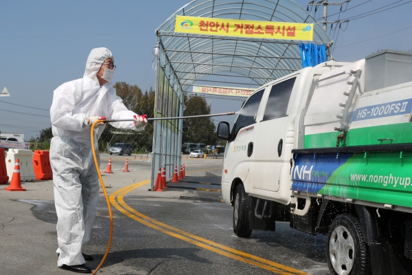 Suspected ASF case south of Seoul tested negative