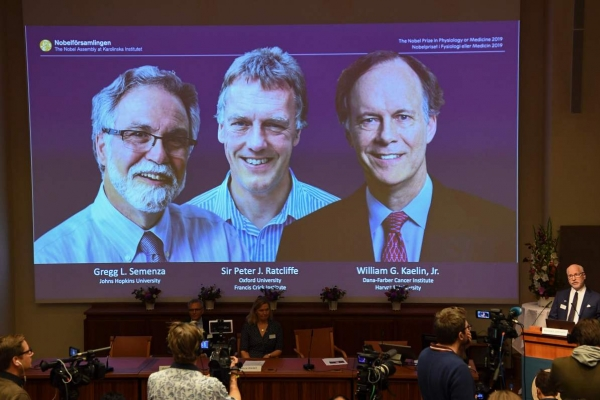 Trio win medicine Nobel for work on how cells adapt to oxygen