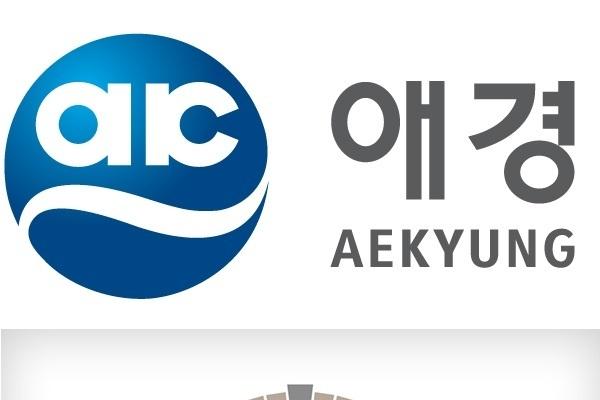 Aekyung, Stonebridge Capital join hands for Asiana bid
