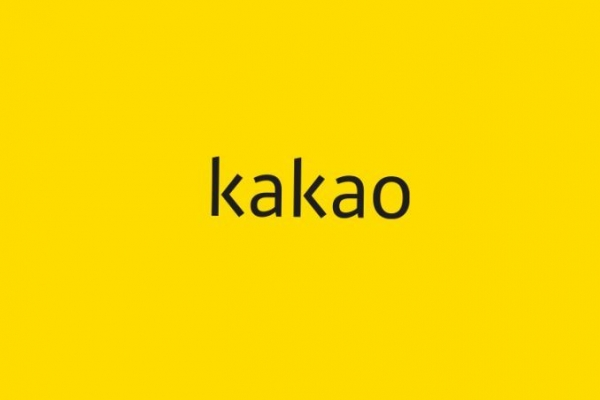 Kakao suspends online comments for entertainment articles after Sulli's death