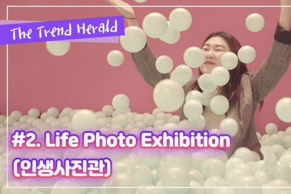 [Video] Exhibition offers unique joy of taking pictures