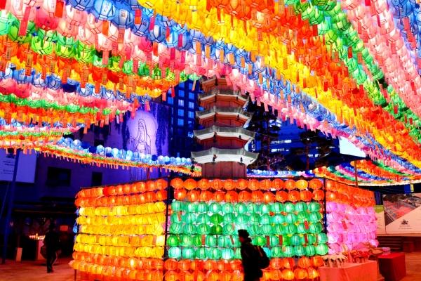 [Eye Plus] Lighting up Buddha's Birthday