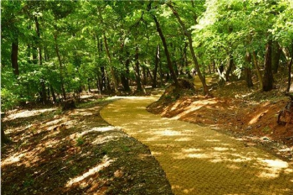 Nine forest trails inside Joseon royal tomb compounds to open May 16