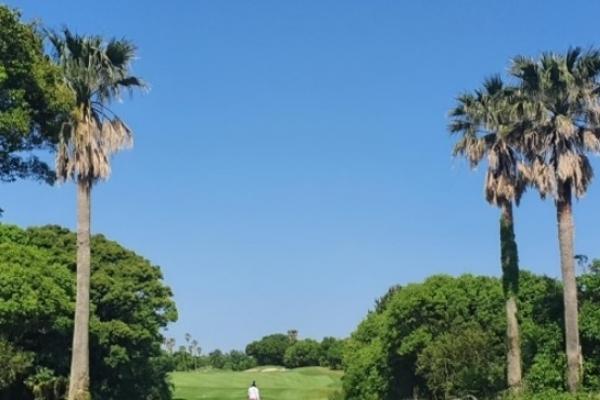 Local golf courses boom, nudge international travel
