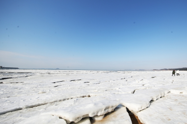 [Photo News] Arctic cold waves freeze ports in Hwaseong
