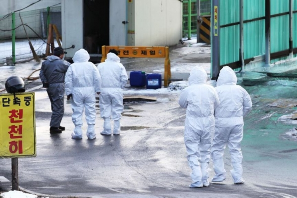 Additional bird flu case confirmed, total now at 68