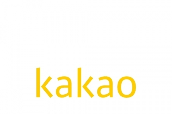 Kakao swings to black in 2020 on robust platform, e-commerce