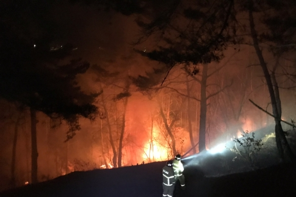 [Newsmaker] Blazes tear through forests in southeastern cities of Andong, Yecheon
