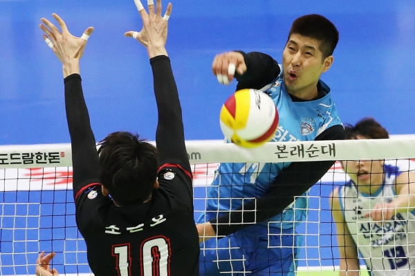 Volleyball player retires after admitting to bullying allegations