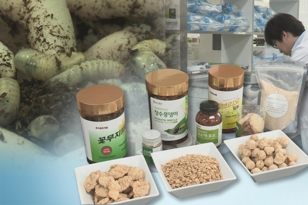 S. Korea to further nurture insects industry