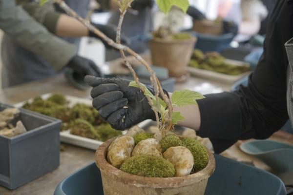 [Weekender] Gardening blossoms in COVID-hit Korea