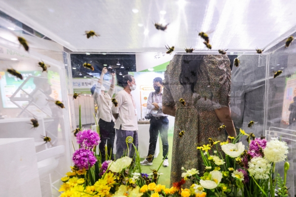 [Photo News] Natural Week Exhibition introduces eco-friendly lifestyle