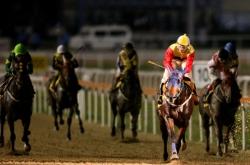 [Weekender] Korea's horse racing industry goes global