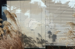 Angered man throws baseball bat at An Hee-jung's window