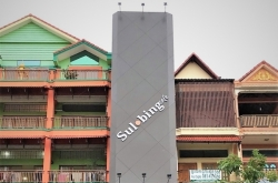 Sulbing's plans to takeoff overseas face strong headwinds