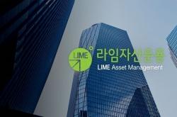 Lime investors to lose over half of principal