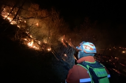 Forest fire in Jeongseon contained, no casualties reported