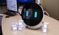 Using robotics in dementia prevention, care