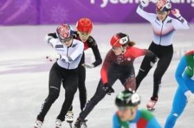 Chinese fans slam Koreans over speedskating penalty