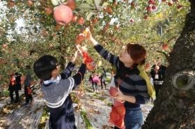 Korea's farming population decreases 42% since 2000