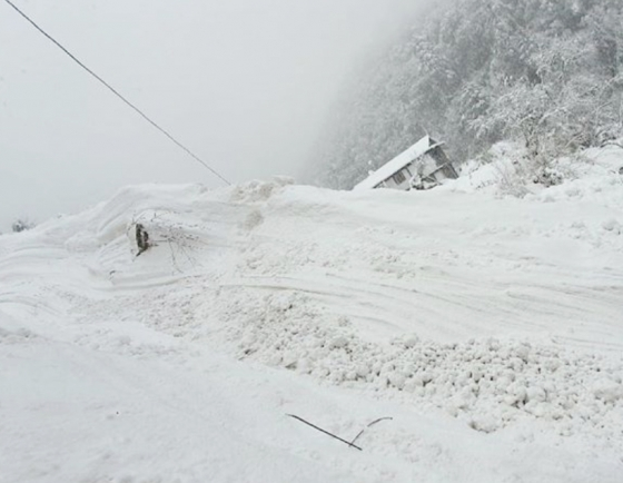 Four Koreans still missing after Annapurna avalanche