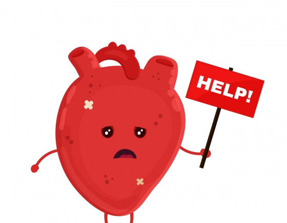 Cardiac arrest most common during Seollal, Chuseok holidays: Study