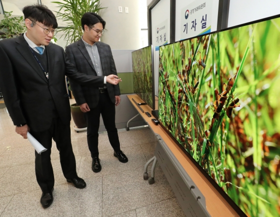 [Photo News] Consumer agency compares UHD TVs of Samsung, LG