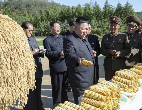 N. Korea's grain imports soar in April amid chronic food shortages: data