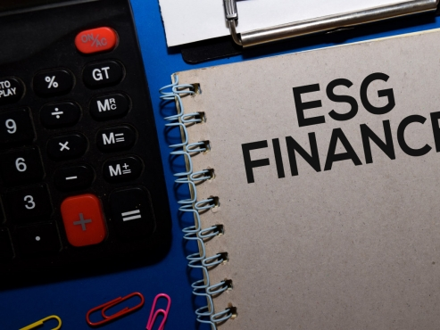 Financial firms need ESG-oriented business strategy: report