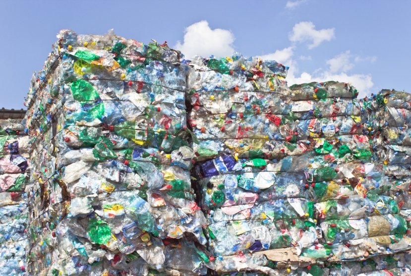Recycling centers face desperate battle to survive