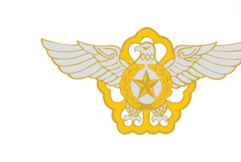 Military police recommend airman be charged with AWOL in 'emperor-like military service' case