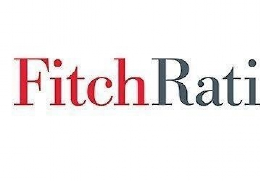 Coronavirus likely to deepen auto sector woes: Fitch