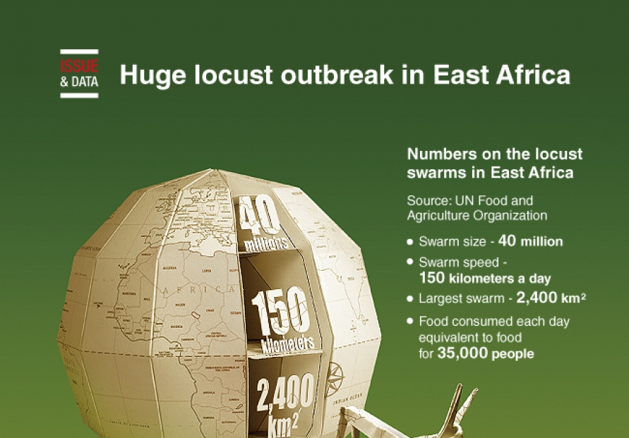 [Graphic News] Huge locust outbreak in East Africa