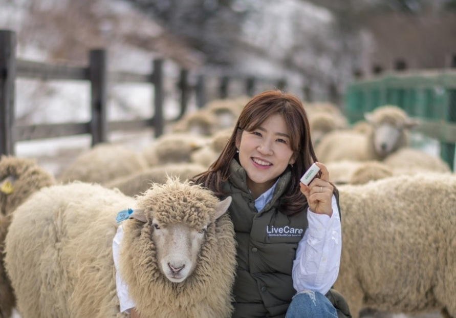 ULikeKorea expands livestock healthcare tech to sheep in Mongolia