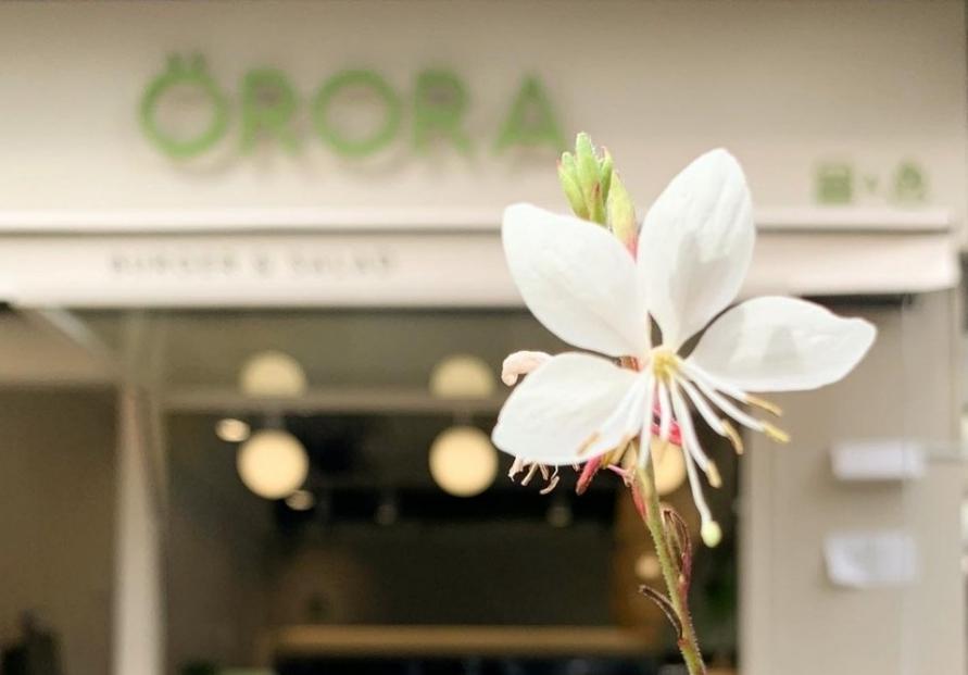 Protein-centric salads at Orora