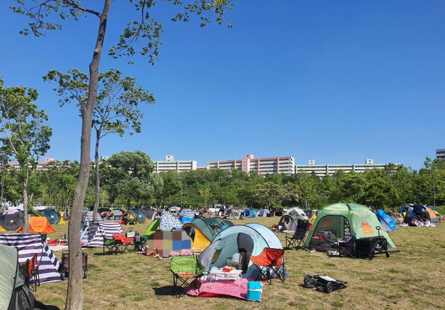 Seoul mulls drinking ban along Han River
