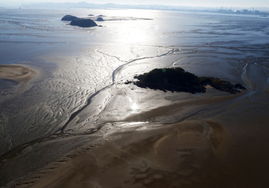 S. Korean tidal flats listed as UNESCO world heritage